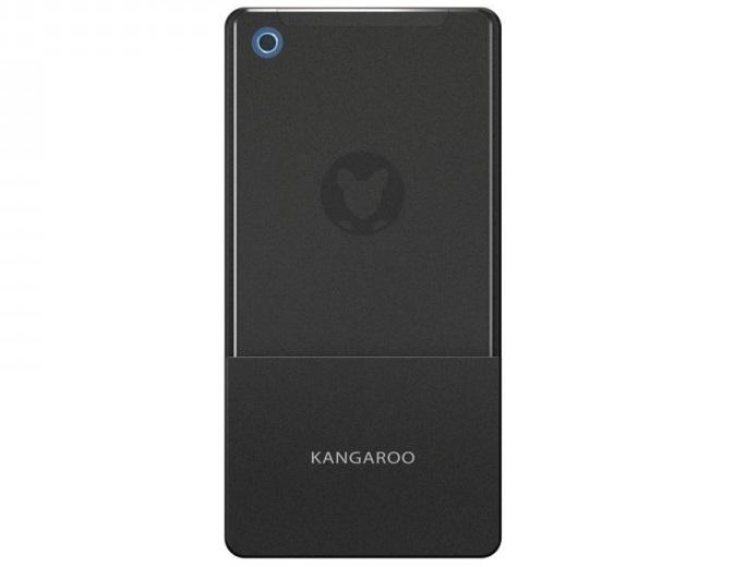 InFocus Kangaroo Pro