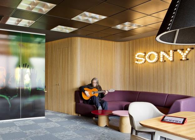Sony H8216